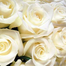 100 Long Stem White Roses: Send Roses to USA
