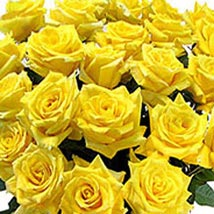 100 Long Stem Yellow Roses: Get Well Soon