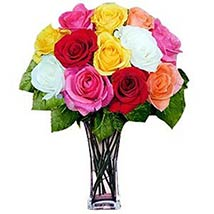 12 Long Stem Assorted Roses: Send Valentine Day Gifts to Fremont