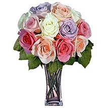 12 Long Stem Pastel Roses: Valentine Flowers to USA