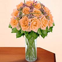 12 Long Stem Peach Roses: Valentine Gifts Kansas City