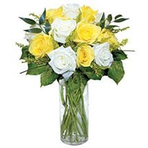 12 Long Stem Yellow and White Roses: Send New Born Flowers to USA