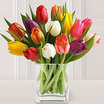 15 Stem Mixed Tulips: Gifts for Birthday
