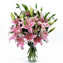 20 Pink Oriental Lilies: Send Valentine Day Gifts to Madison