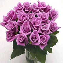 25 Long Stem Lavender Roses: Flowers to San Jose