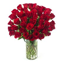 50 Long Stem Red Roses: Birthday Gifts to Cary