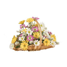 A Daisy A Day: Send Mothers Day Gifts to USA