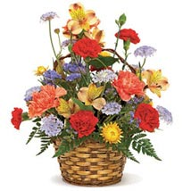 Carnival of Color: Send New Year Flowers to USA