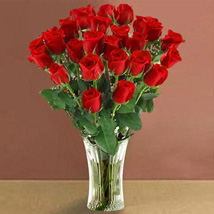 Long Stem Red Roses: Birthday Gifts to Cary