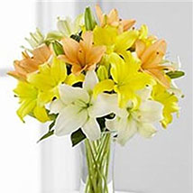 Simple Asiatic Lilies: Valentines Day Gifts to New Jersey