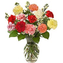 Simply Elegant: Send Flowers to San Jose