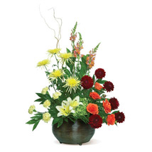 Warm Tones: New Year Flowers to USA