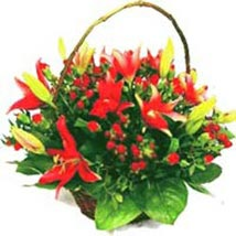 Traditional Basket Full of Love zim: Send Gifts to Zimbabwe